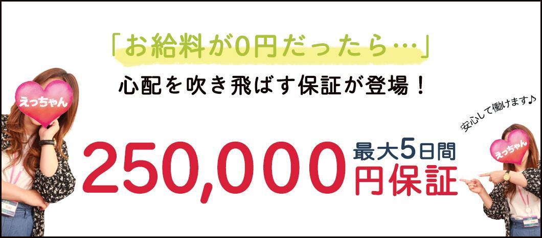 250000円保証